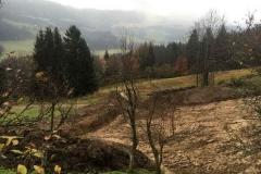 2016-BVH-Hirscher-Marcel-Abtenau05