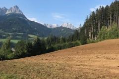 2018-BVH-Zehenthof-Eva04